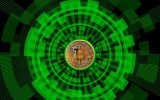 Bitcoin slips in a temporary reverse gear