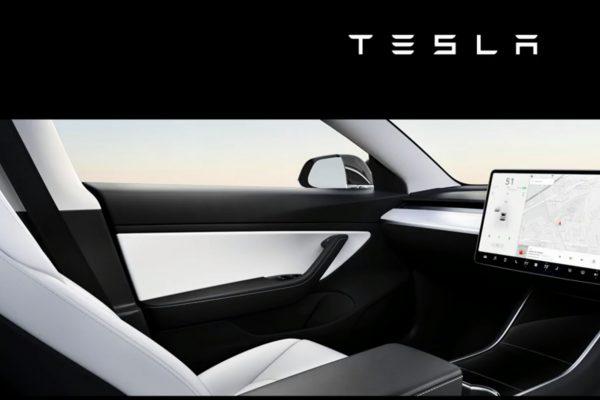Tesla Robotaxi Concept