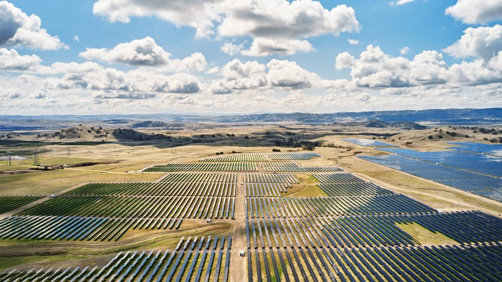 Apple - California Flats